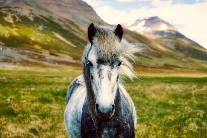 bellezas islandia viajes a islandia 2018